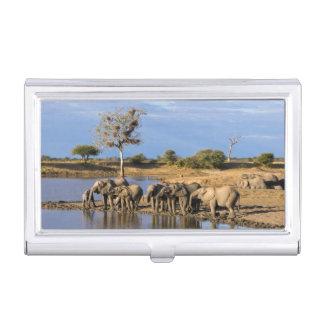 Étui Pour Cartes De Visite Troupeau d'éléphant de Bush d'Africain (Loxodonta