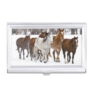 Étui Pour Cartes De Visite Un hiver pittoresque des chevaux courants sur les