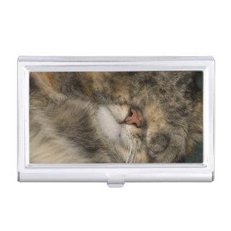 Étui Pour Cartes De Visite Yeux de bâche de chat de Chambre tout en dormant