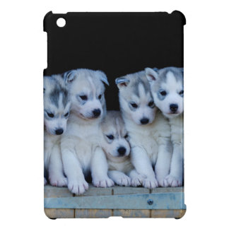 Étuis iPad Mini Husky puppies