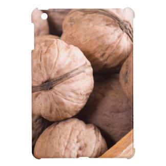 Étuis iPad Mini Macro vue d'un groupe de noix dans une boîte en