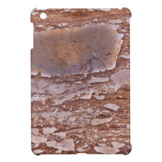 Étuis iPad Mini Surface d'un grès rouge avec les geods siliceux