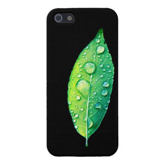 Étuis iPhone 5 Feuille vert clair avec des gouttes de pluie sur l