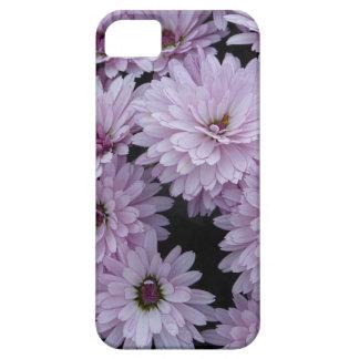 Étuis iPhone 5 Light Purple