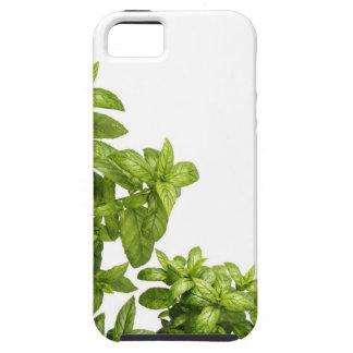 Étuis iPhone 5 Se d'iPhone + cas de fines herbes de l'iPhone 5/5S