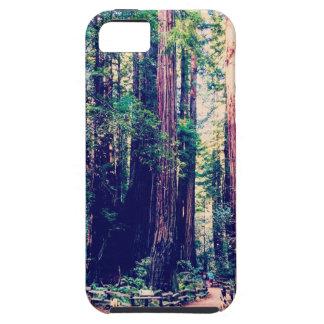 Étuis iPhone 5 Séquoias de Californie