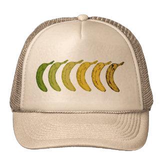 Évolution de banane casquette