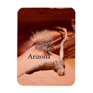 Explorez l'Arizona Magnet En Vinyle
