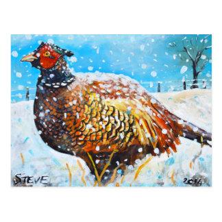 Faisan dans la neige ! cartes postales