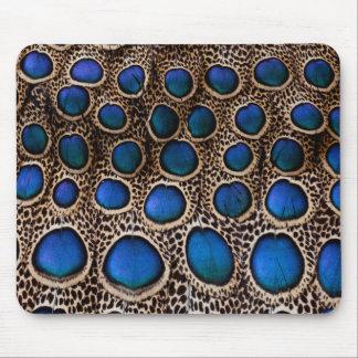 Faisan de paon repéré par bleu tapis de souris