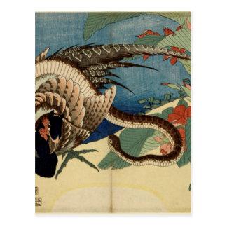 Faisan et le serpent carte postale