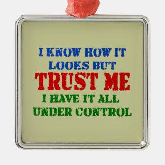 Faites- confiancemoi - tout sous le contrôle ornement carré argenté