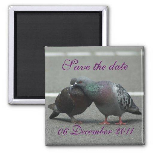 faites gagner la date avec des pigeons magnets pour réfrigérateur