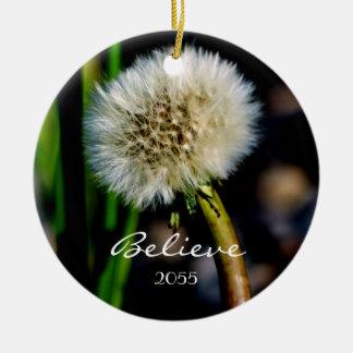 Faites un souhait, croyez, ornement de Noël de