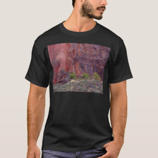 Falaises de courbure de canyons de Zion grandes T-shirt
