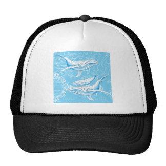 Famille de baleines bleues casquette de camionneur