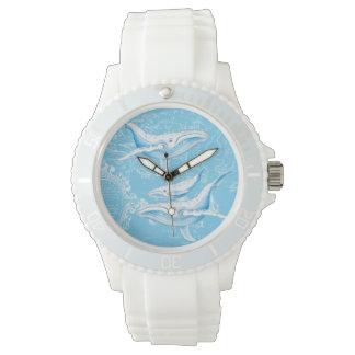 Famille de baleines bleues montres
