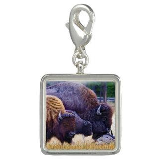 Famille de bison américain breloques