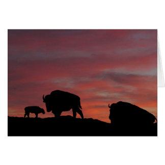 Famille de bison carte de vœux