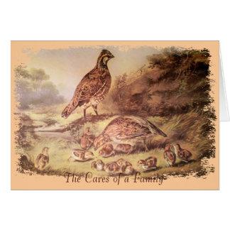 Famille de carte de remerciements de cailles