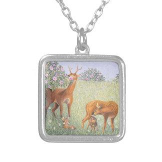 Famille de cerfs communs collier