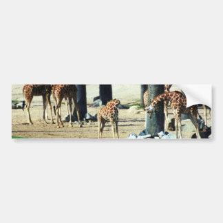 Famille de girafe autocollant pour voiture