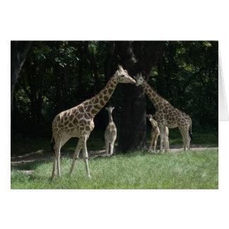 Famille de girafe cartes