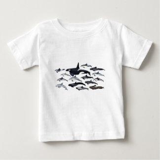 Famille des dauphins : orques, dauphins, marsopas t-shirt pour bébé
