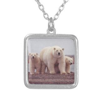 Famille d'ours blanc pendentif carré