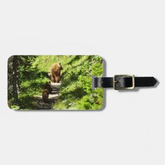 Famille d'ours de Brown Étiquette À Bagage