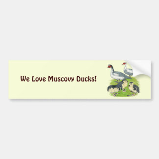 Famille pie bleue de Muscovy de canards Autocollant De Voiture