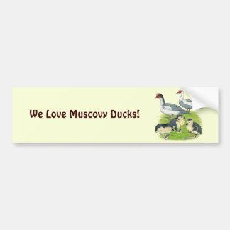 Famille pie bleue de Muscovy de canards Autocollant Pour Voiture