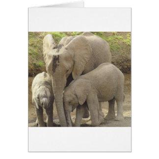 Famille unit.jpg cartes