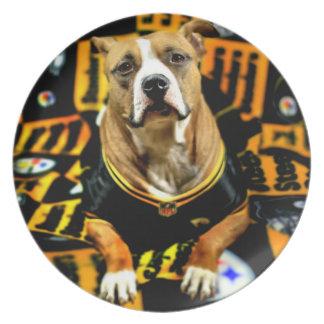 Fanatique du football de chien de délivrance de assiette