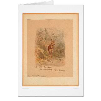 Faon dans la forêt (0567A) Carte De Vœux