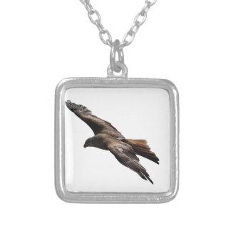 faucon collier