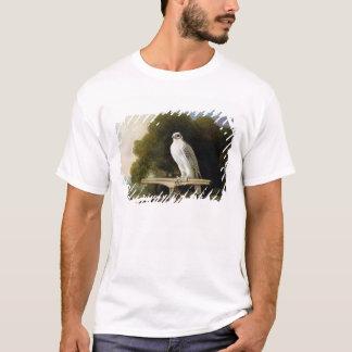 Faucon du Groenland (faucon gris), 1780 (huile sur T-shirt