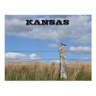 Faucon du Kansas sur un courrier de barrière de Carte Postale