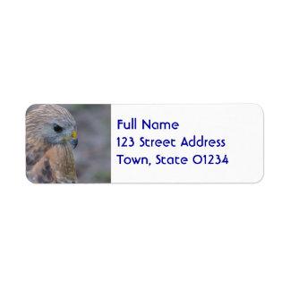 Faucon épaulé rouge étiquettes d'adresse retour