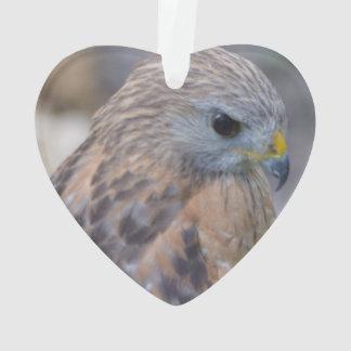 Faucon épaulé rouge