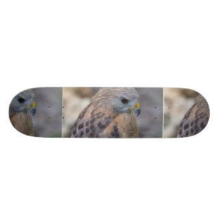 Faucon épaulé rouge plateau de skateboard