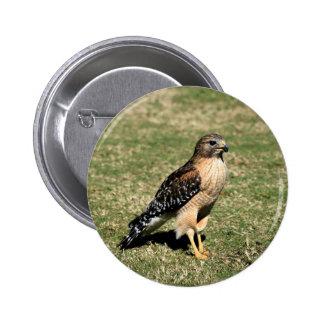 Faucon épaulé rouge sur le terrain de golf badge rond 5 cm