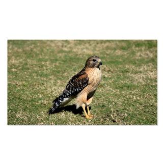 Faucon épaulé rouge sur le terrain de golf carte de visite standard