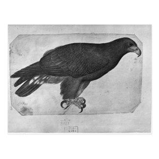 Faucon, le de l'album de Vallardi Carte Postale
