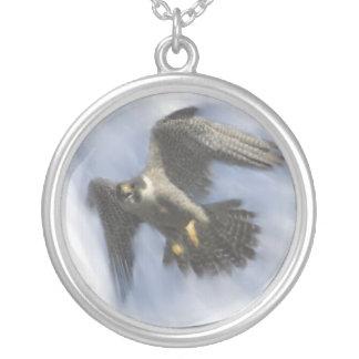 Faucon pérégrin en vol collier