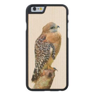 Faucon Rouge-Épaulé Coque Carved® Slim iPhone 6 En Érable