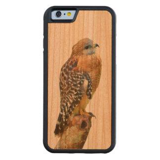 Faucon Rouge-Épaulé Coque iPhone 6 Bumper En Cerisier