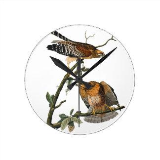 faucon Rouge-épaulé Horloges