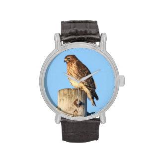 faucon Rouge-épaulé Montres Bracelet