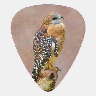 Faucon Rouge-Épaulé Onglet De Guitare